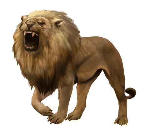 Lion final1