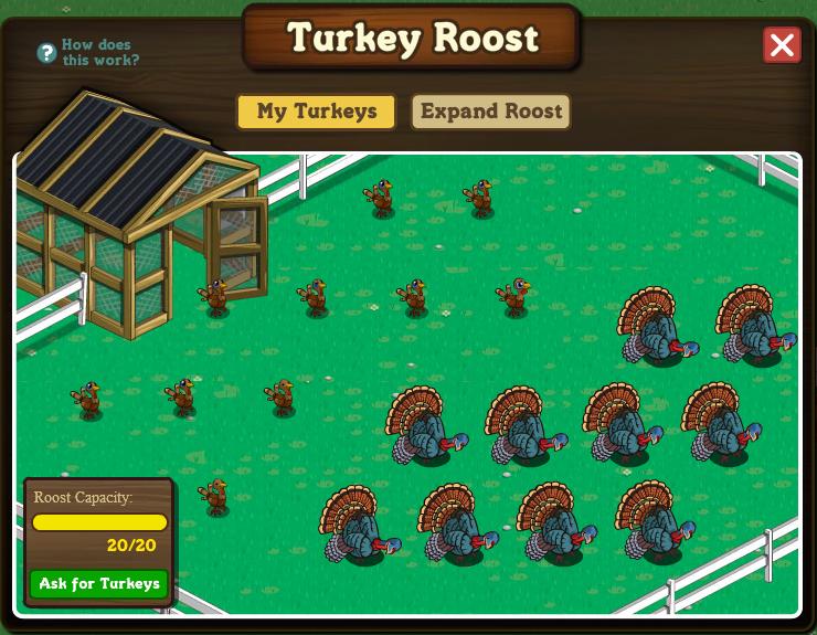 Turkey_roost_04