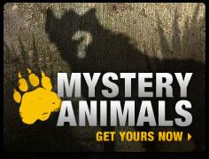 Mystery animals