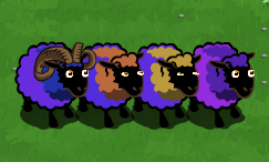 Sheep_pen17