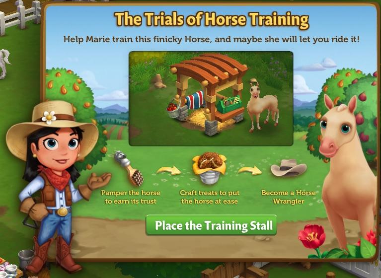 Horse Training MOTD