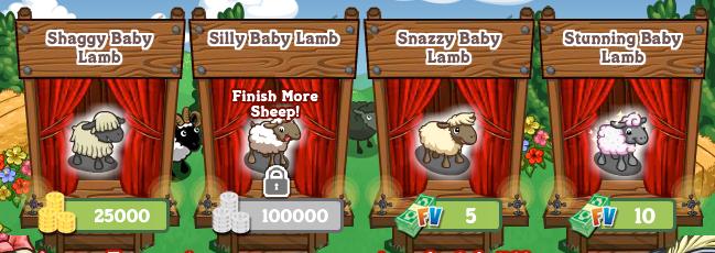 Socialsheep_lambs