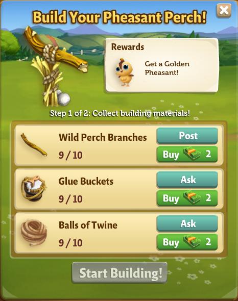 Golden Pheasant 2