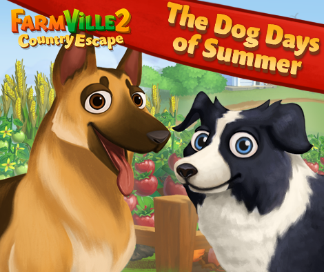 Summer_event_dogs_promo_02_4
