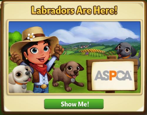 Labradors - FarmVille 2