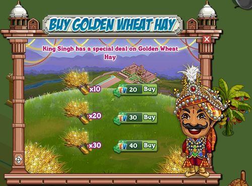 Buy Golden Wheat Hay