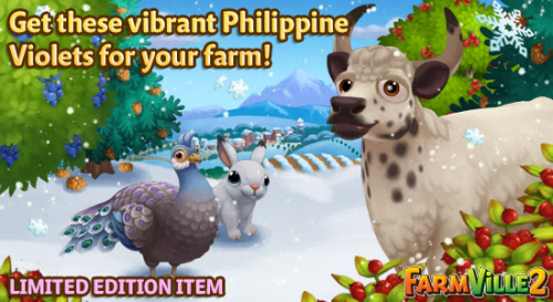 Get these vibrant Philippine Violets for your farm LE - FarmVille 2
