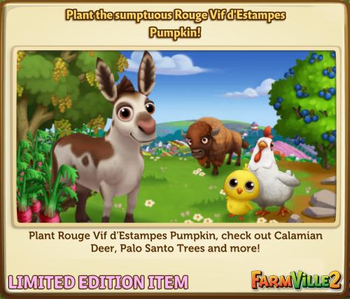 Plant the sumptuous Rouge Vif d'Estampes Pumpkin