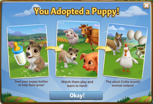 Dogs - FarmVille 2