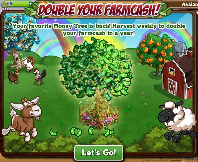 1 Money Tree