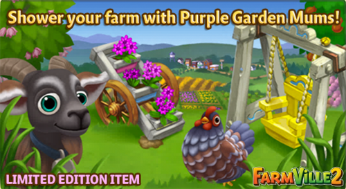 Shower your farm with Purple Garden Mums LE - FarmVille 2