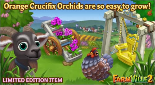 Orange Crucifix Orchids are so easy to grow LE - FarmVille 2