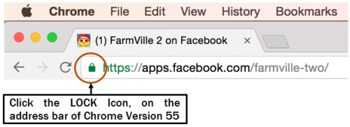 FarmVille 2 Browser Support - Chrome Version 55
