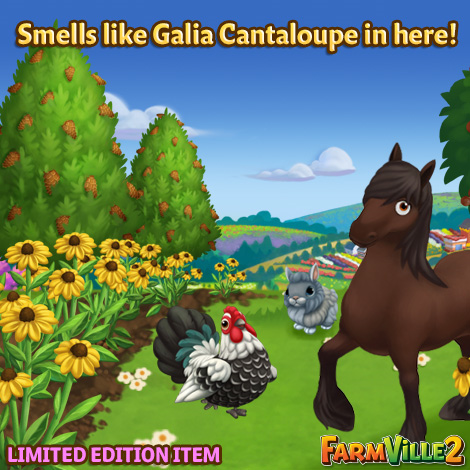 Smells like Galia Cantaloupe in here LE - FarmVille 2