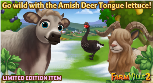 Go wild with the Amish Deer Tongue lettuce LE - FarmVille 2