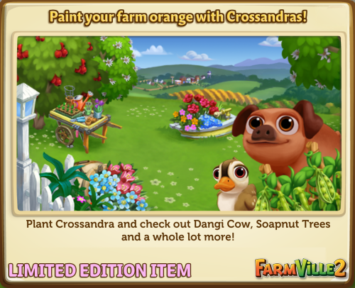 Paint your farm orange with Crossandras! - FarmVille 2