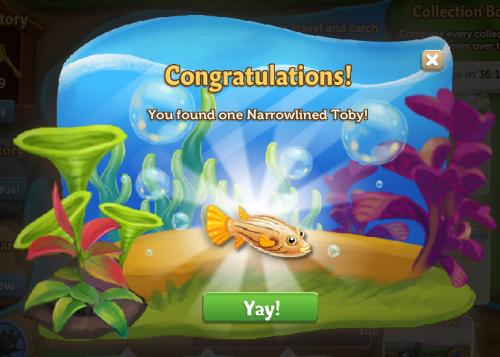 Pufferfish 16